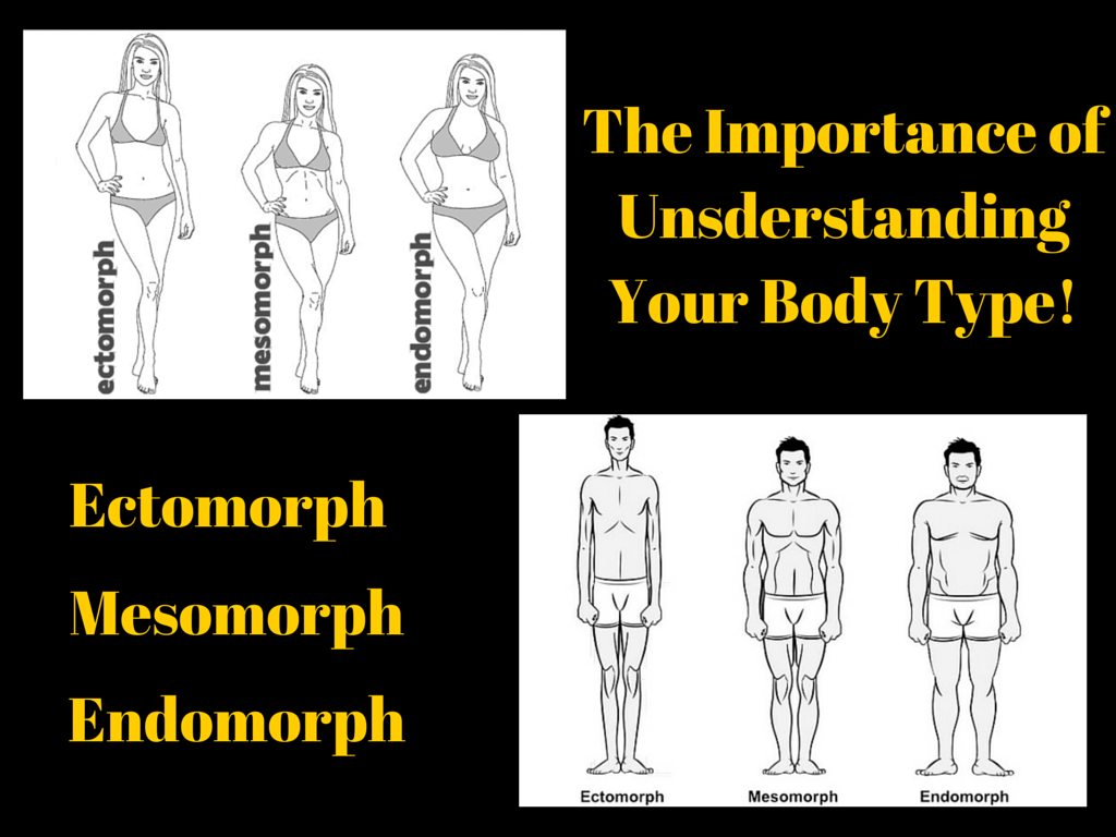 endomorphs – Healthy Eating Plan and Weight Loss for Men ...